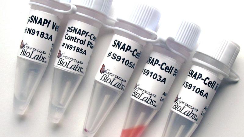 NEB/SNAP-Cell® Starter Kit/E9100S/1 set