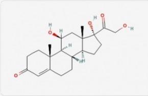 salimetrics/Cortisol/cortisol/25 μL