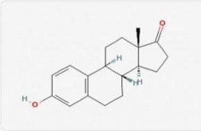 salimetrics/Estrone/estrone/100 μL