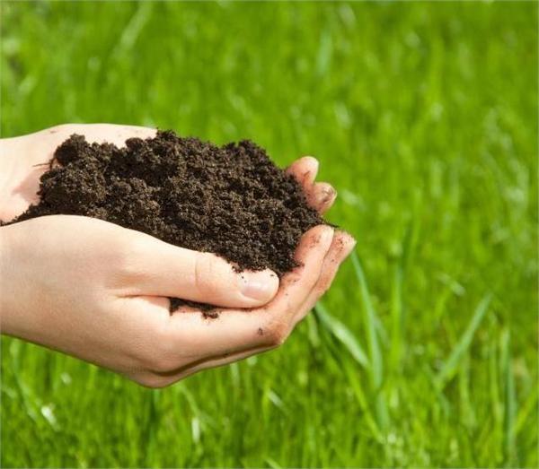 土壤生化检测 理化指标检测