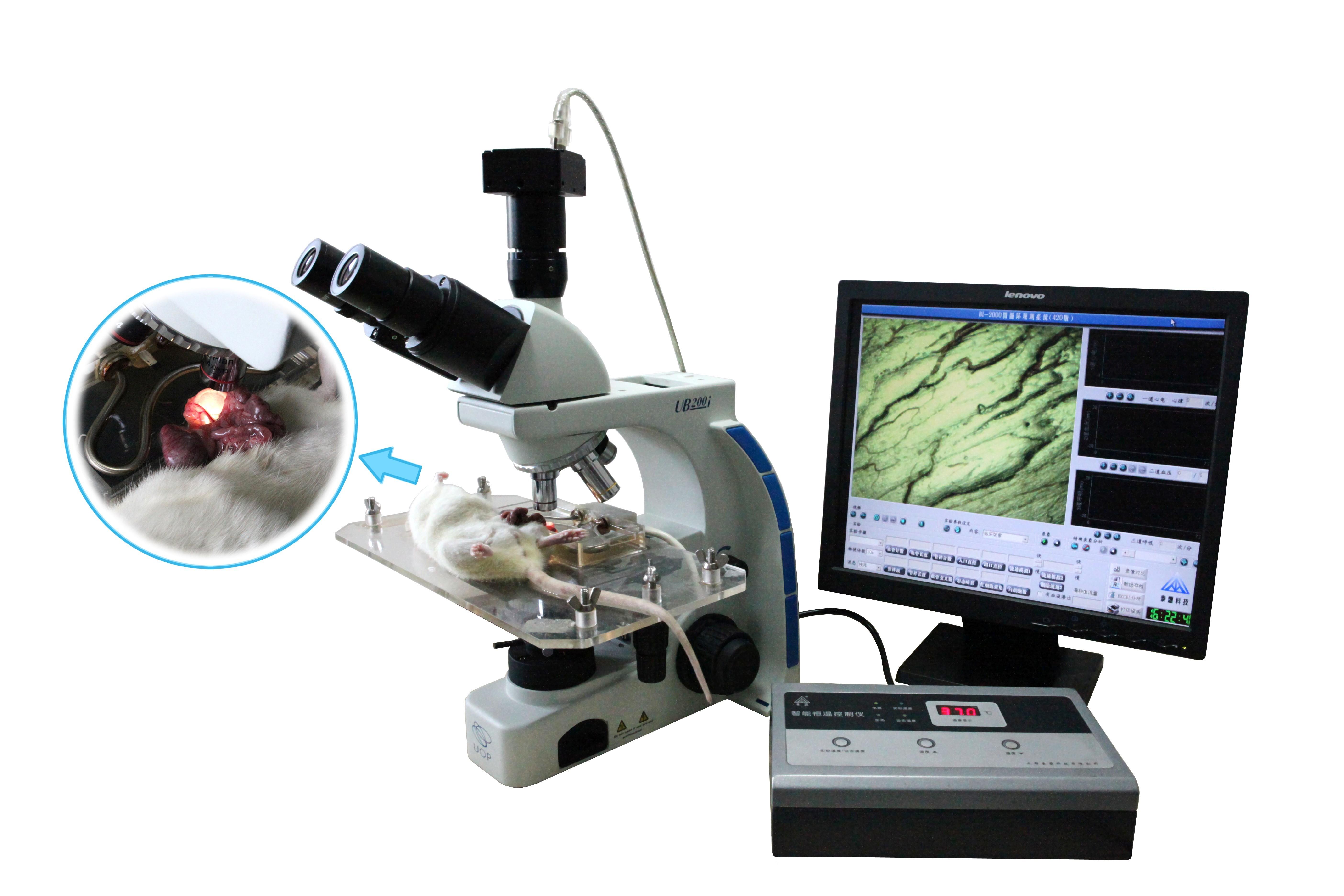 泰盟  医学图像分析系统BI-2000