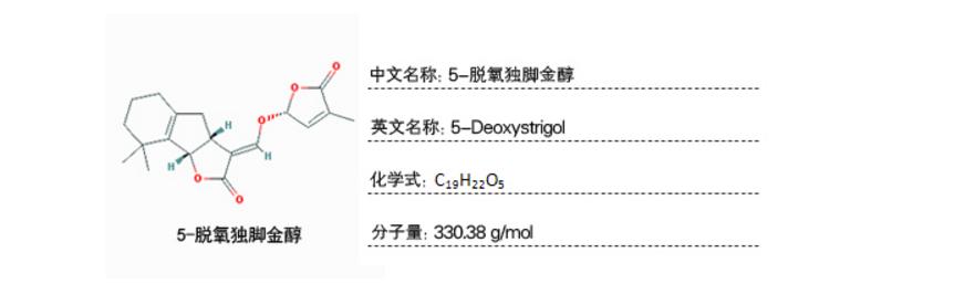 植物样品激素含量检测-独脚金内酯