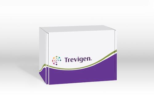 细胞凋亡检测试剂盒 Annexin V FITC Kit