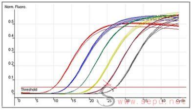 RT-PCR