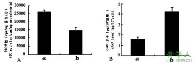 PKC蛋白激酶活性检测实验外包服务