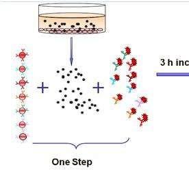 流式CBA多因子检测外包实验