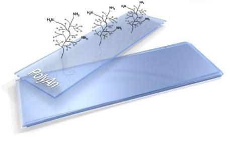 PolyAn表面修饰芯片片基