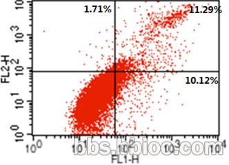 流式细胞凋亡(原代细胞培养、细胞培养、细胞鉴定、RTCA检测 、CCK8/MTT检测、细胞划痕实验、流式分选、Transwell迁移、侵袭实验、细胞克隆、细胞周期/凋亡检测等整体服务) 威斯腾生物,让科研更简单!