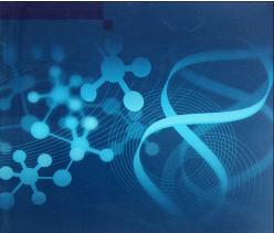 microRNA qPCR检测