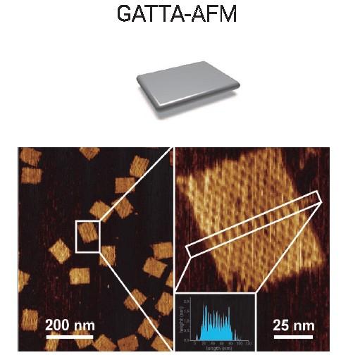 AFM原子力显微镜纳米标尺