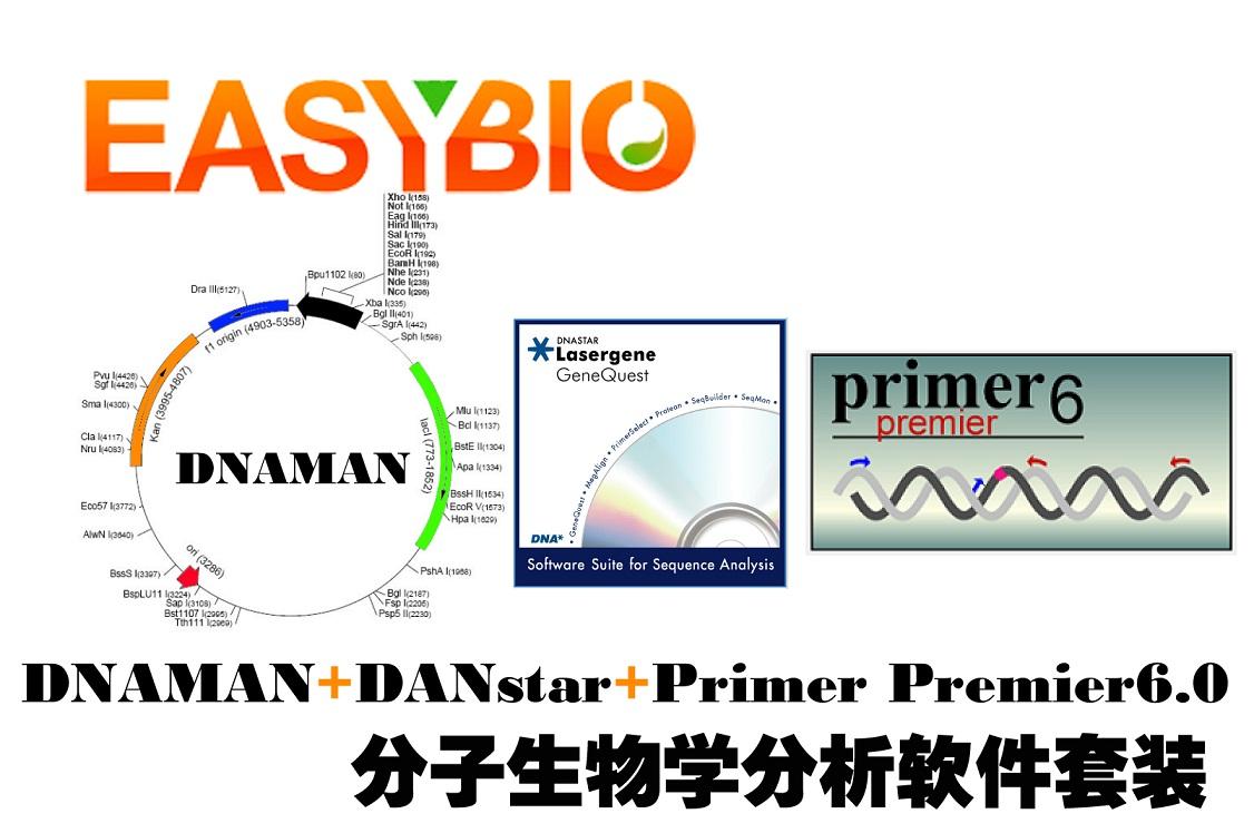 DNAMAN、DNAstar、Primer Premier6.0分析软件三件套