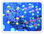 miRNA质粒产品