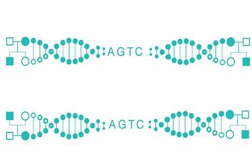全基因组测序技术服务