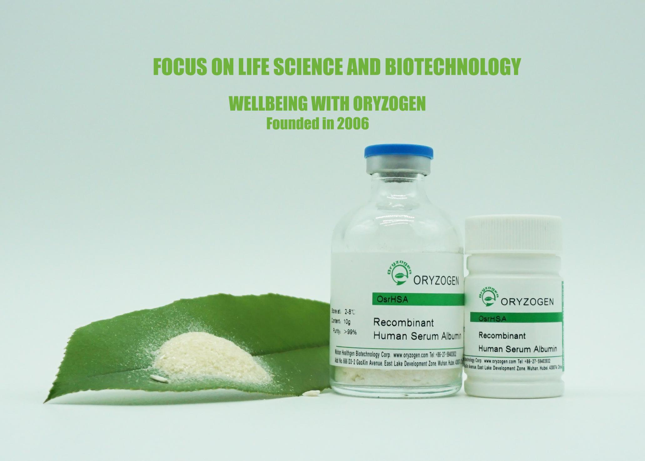 药物辅料-重组人血清白蛋白(rHSA)