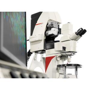 德国徕卡 共聚焦显微镜 TCS SP8 MP 多光子显微镜