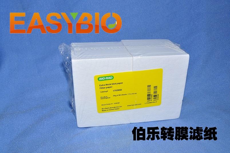 美国 BIO-RAD 1703965 伯乐 原装 正品电转超厚滤纸 7.5*10cm