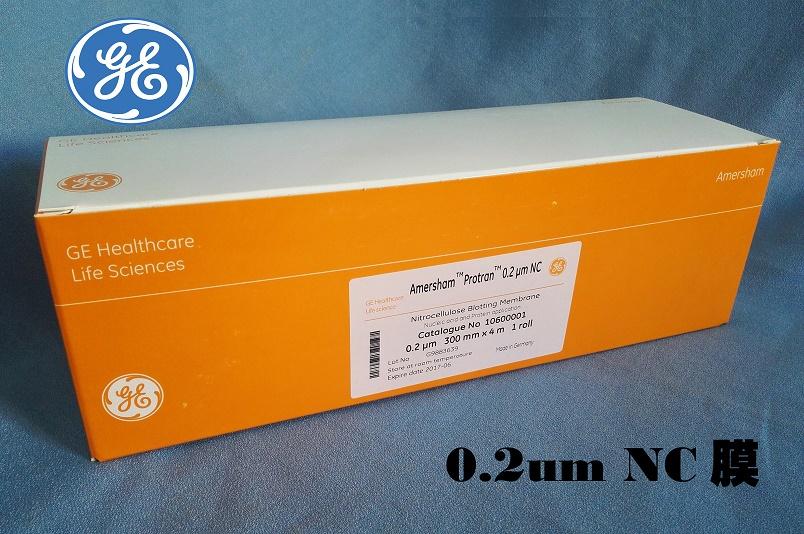 现货GE 0.2um 300mm*4m 硝酸纤维素 NC膜 转印迹膜10600001