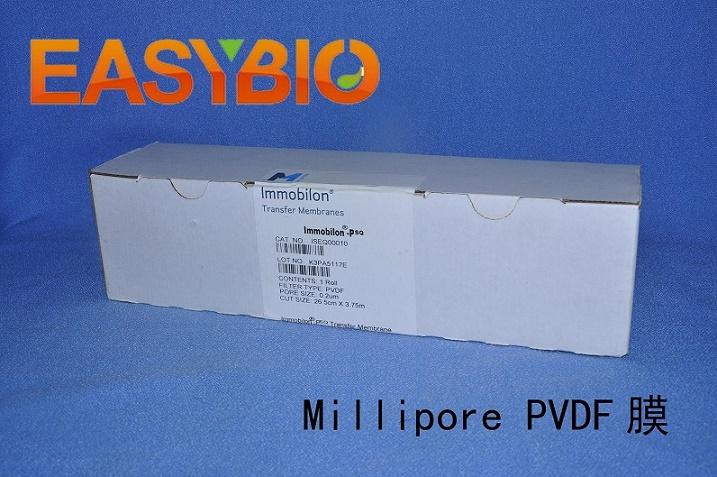 Millipore PVDF膜 0.2u ISEQ00010